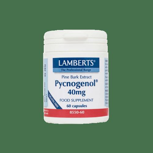 Pycnogenol mg